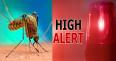 ডেঙ্গু প্রতিরোধে ভারতজুড়ে 'হাই অ্যালার্ট' জারি