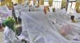 চিকিৎসায় নিয়োজিত থেকে ডেঙ্গু আক্রান্ত হয়েছেন ৯৪ চিকিৎসক