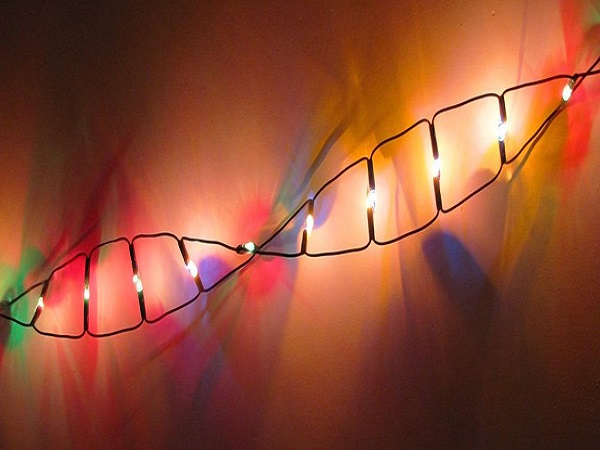 Gene-Editing Technology Has Successfully Targeted Cancer's